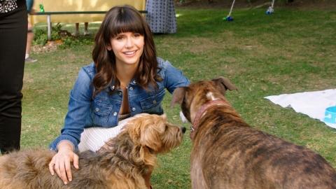 "Nina Dobrev stars as ""Elizabeth"" in director Ken Marino's DOG DAYS, a LD Entertainment release. Credit : Jacob Yakob / LD Entertainment"